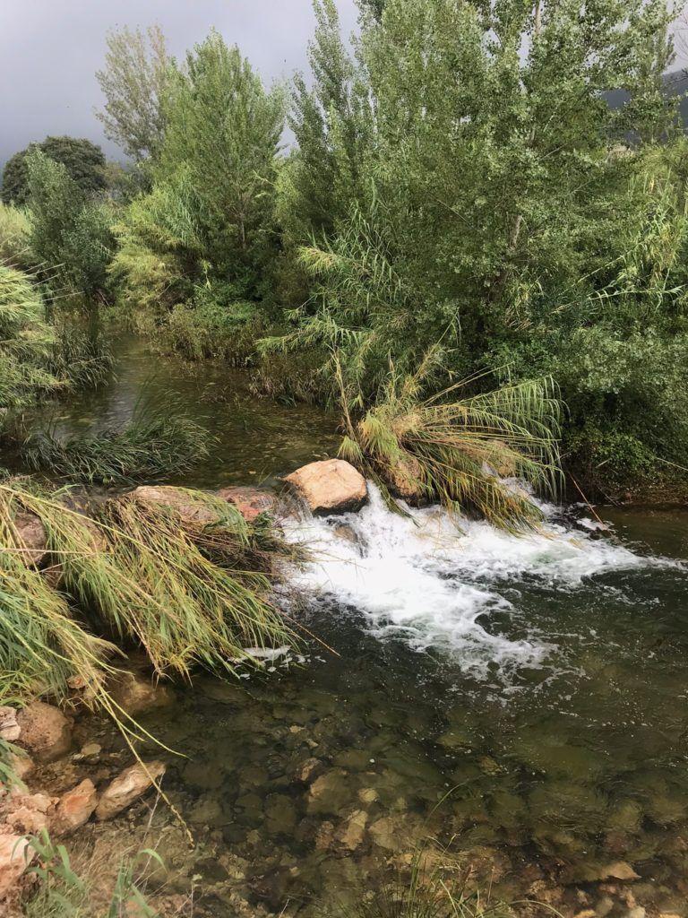 riu gorgos xalo gata xabia marina alta visita guiada endemica