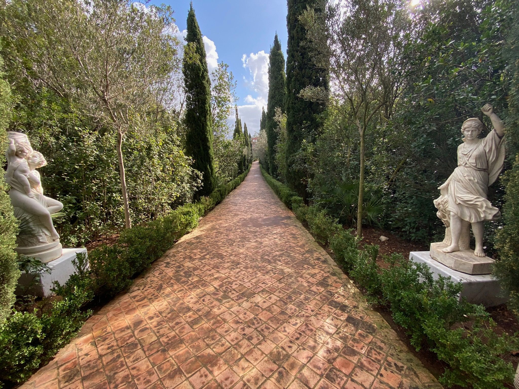 jardin albarda pedreguer escape garden endemicanatura