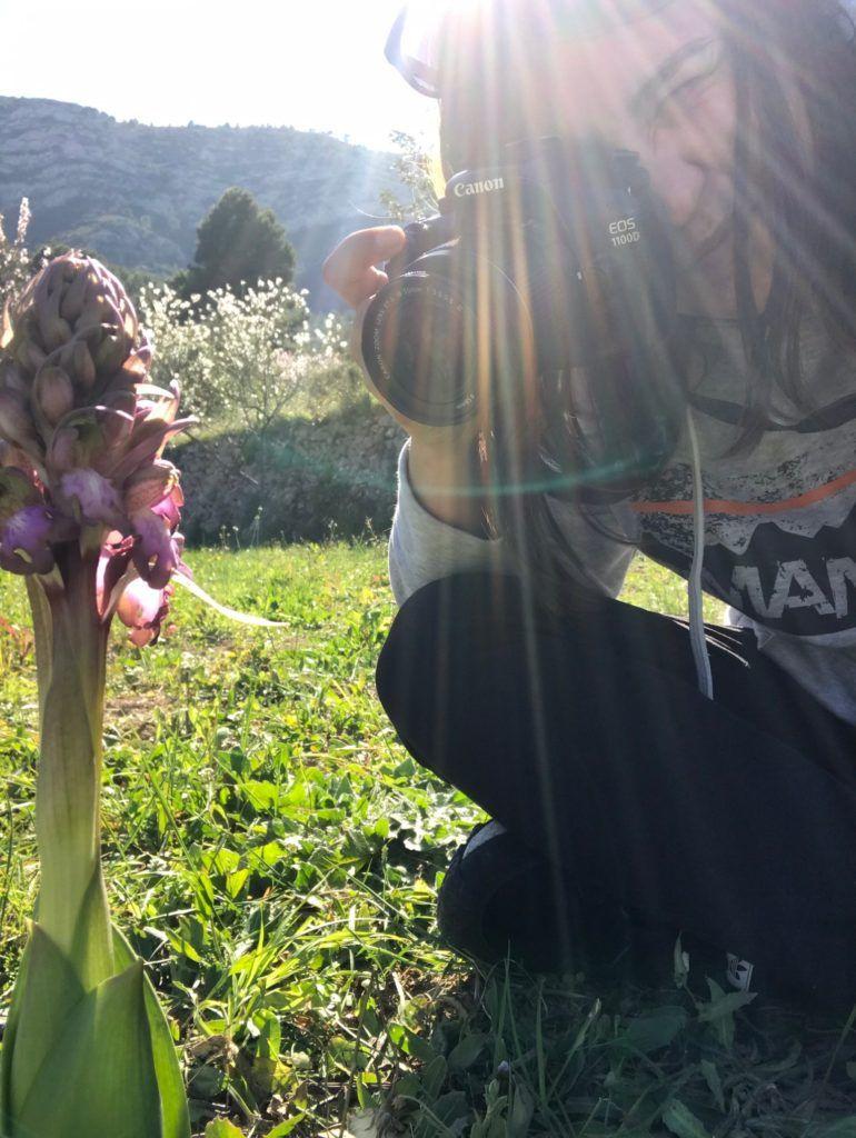orquiruta fotografia orquidas silvestres gva endemica