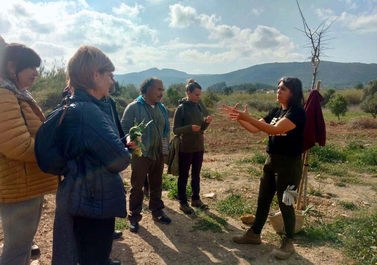 jornada plantes comestibles endemicanatura