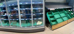endemicanatura supermercat buit març 2020
