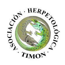 timon valencia logo